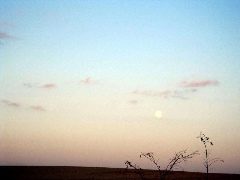 Luna Llena en Las Dunas