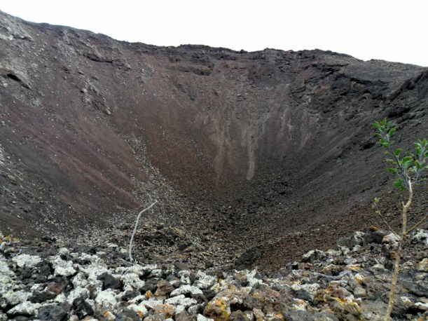 cráter con plantita