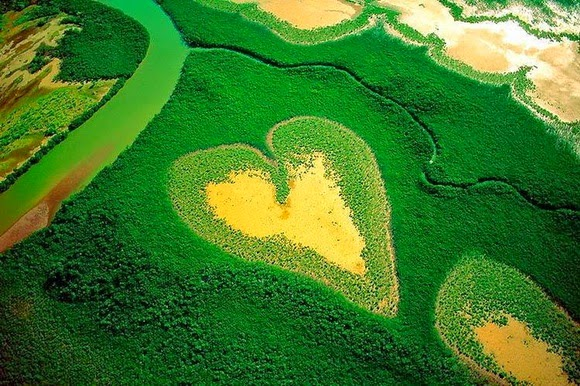 Manglares con forma de corazón, Nueva Caledonia
